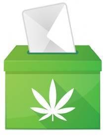 Comprar semillas de cannabis