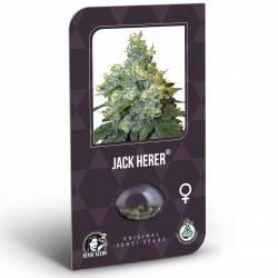 Jack Herer Feminizadas (Classic Redux Serie)
