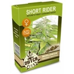 Short Rider Feminizadas Autoflowering