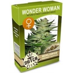Wonder Woman Feminizadas